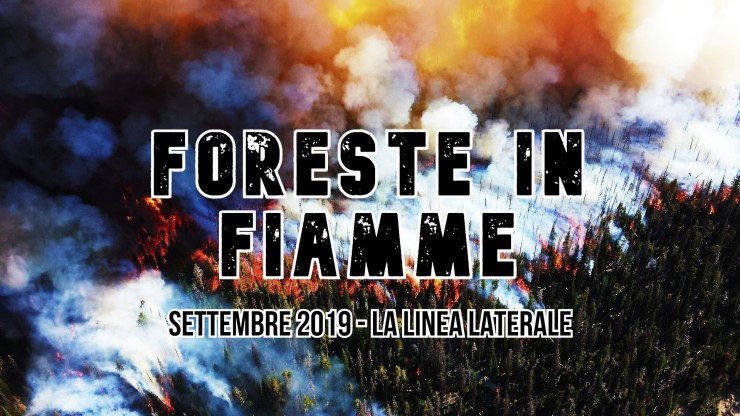 Foreste in fiamme (large)